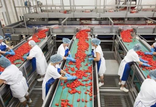 Image of production line in a food-grade area working with stainless steel equipment.